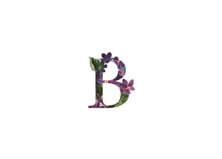 b1549a22242659-5666d8824a43c